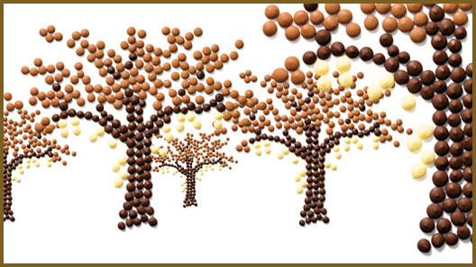 Cioccolato, Surrogati e Decorazioni
